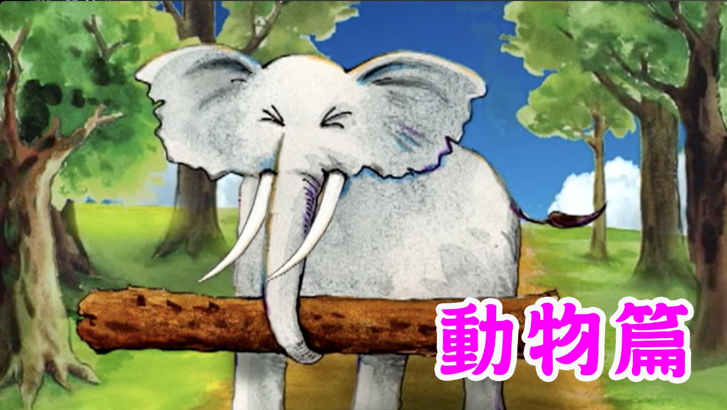 《悠遊字在》動物篇(二)